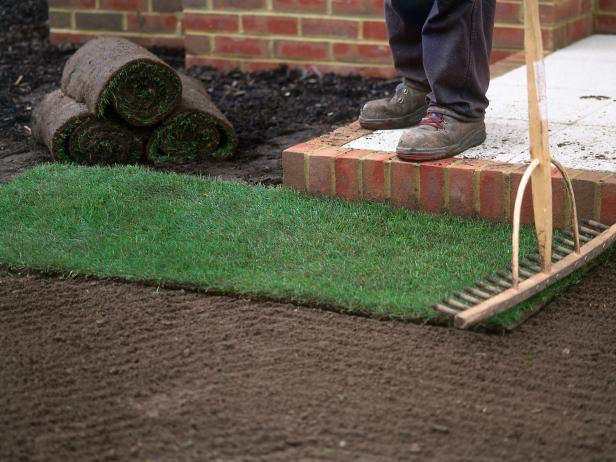 Image result for SOD GRASS INSTALLATION